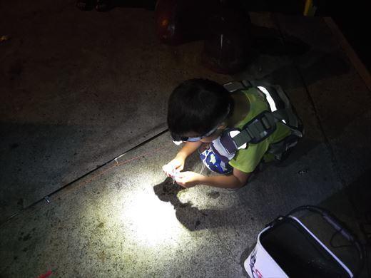 1日目の野伏港夜釣り (9)