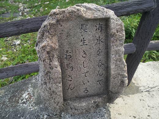 式根島2日目 (13)