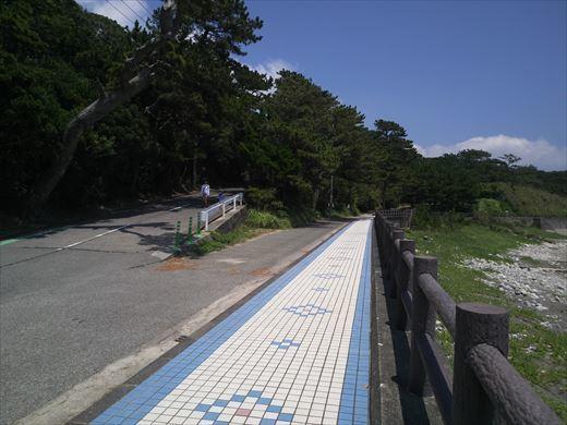 式根島釜の下方面 (19)