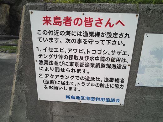 式根島2日目夜釣り (12)