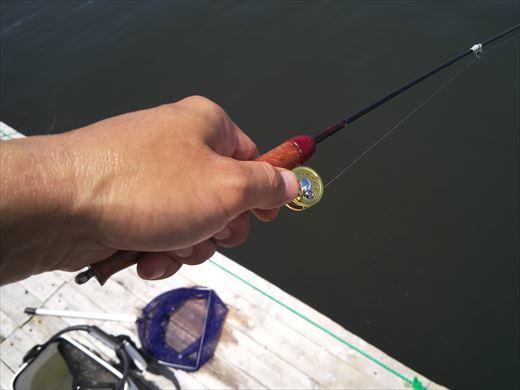 マイクロタックルで釣りに行こう (18)