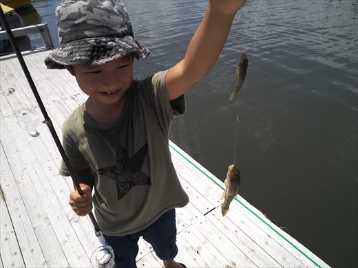 マイクロタックルで釣りに行こう (22)