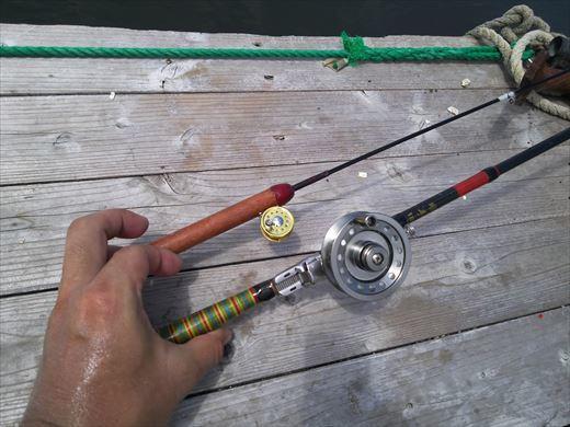 マイクロタックルで釣りに行こう (24)