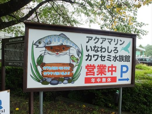 アクアマリンいなわしろカワセミ水族館 (24)