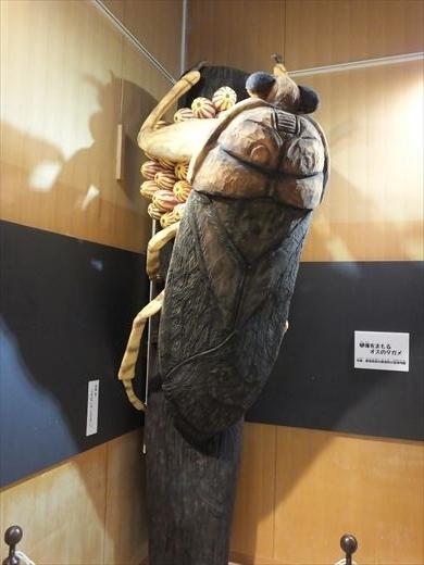 アクアマリンいなわしろカワセミ水族館 (9)