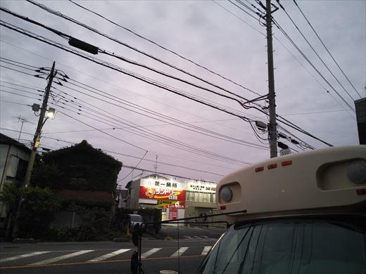 ①葉山港に釣り (1)