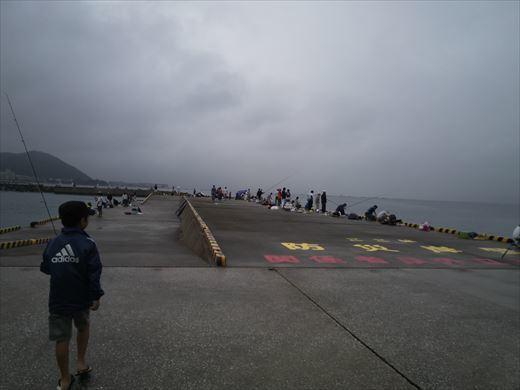 ①葉山港に釣り (8)