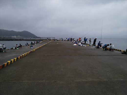 ①葉山港に釣り (9)