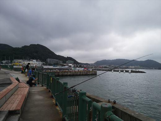 ①葉山港に釣り (11)