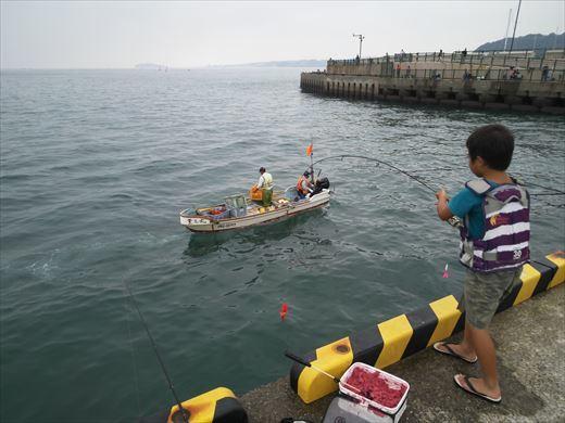①葉山港に釣り (15)
