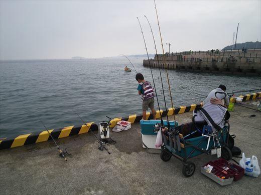①葉山港に釣り (16)