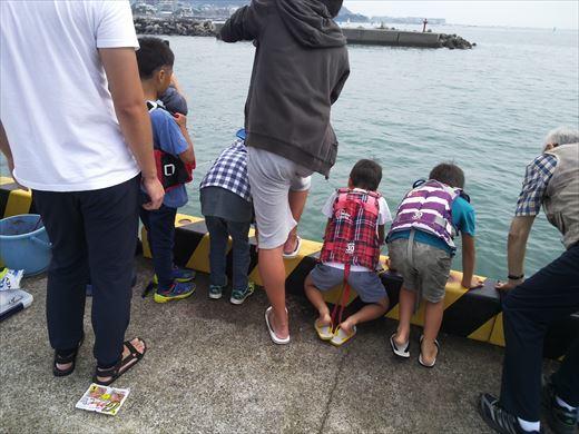 ①葉山港に釣り (19)