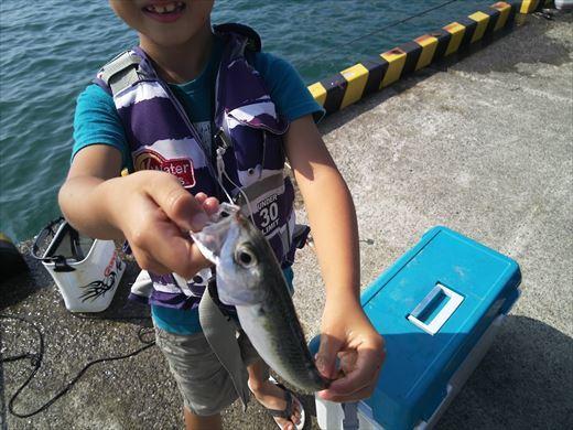 ①葉山港に釣り (22)