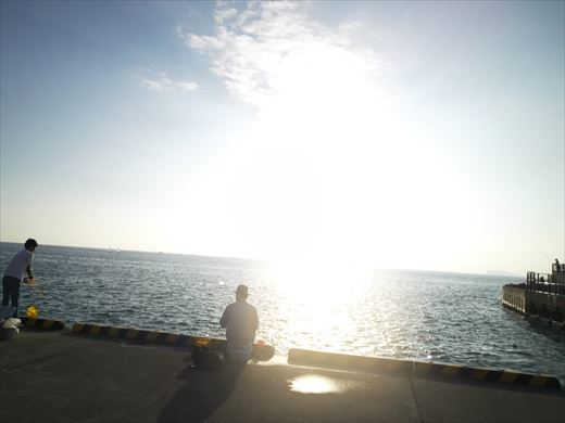 ①葉山港に釣り (27)