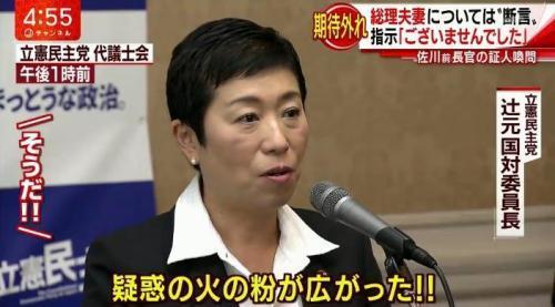 佐川氏証人喚問疑惑野党2