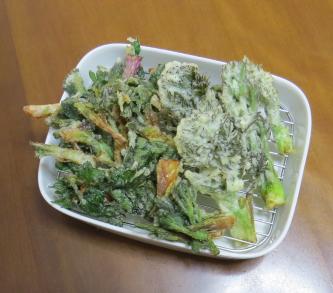 タラの芽と山ウドの芽の天ぷら