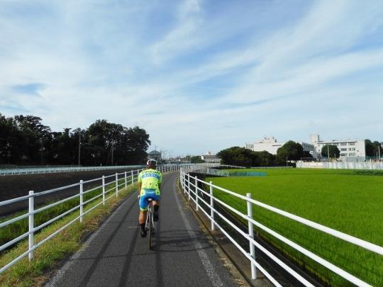 18_07_08-01jougashima.jpg