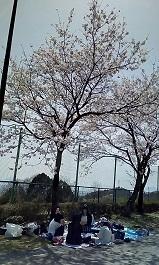☀😃❗お花見🌸🌸_180411_0010 - コピー