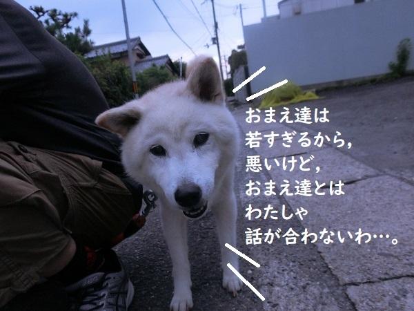 CIMG4413②