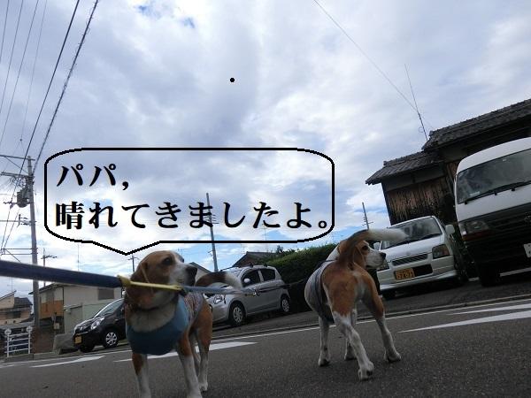 CIMG5874.jpg