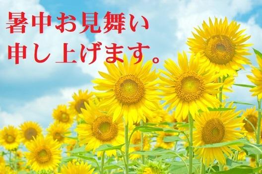 N745_sukusukuhimawari_TP_V.jpg