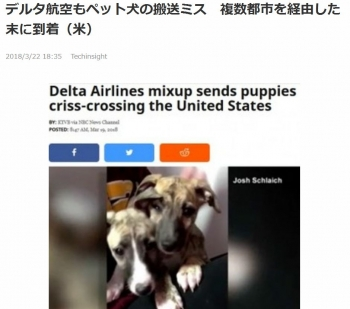 newsデルタ航空もペット犬の搬送ミス 複数都市を経由した末に到着(米)