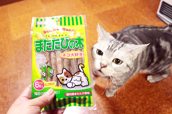 blog_000011664.jpg
