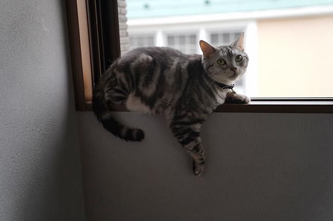 blog_000011846.jpg