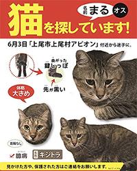 blog_000011950.jpg