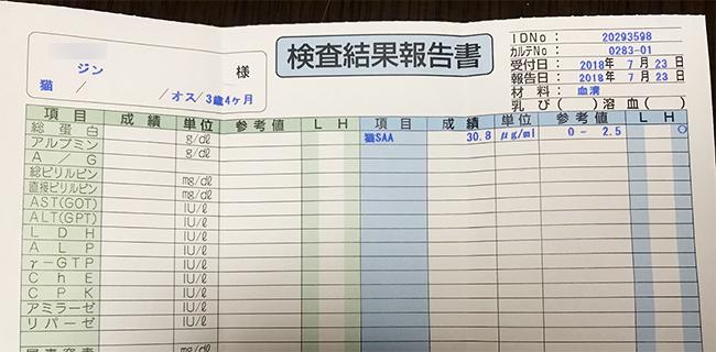 blog_000012181.jpg