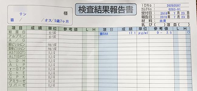 blog_000012183.jpg