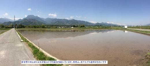 4月28日安曇野バイクラン77k (4) (520x230)