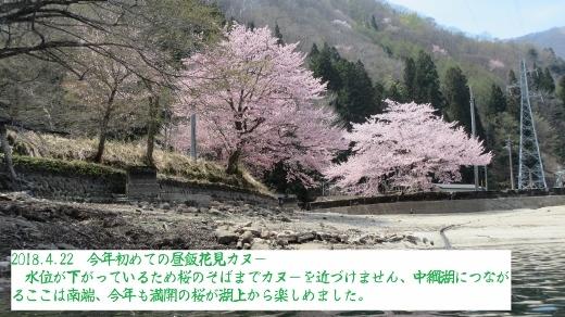 2018_4_22花見昼飯カヌー (4) (520x292)