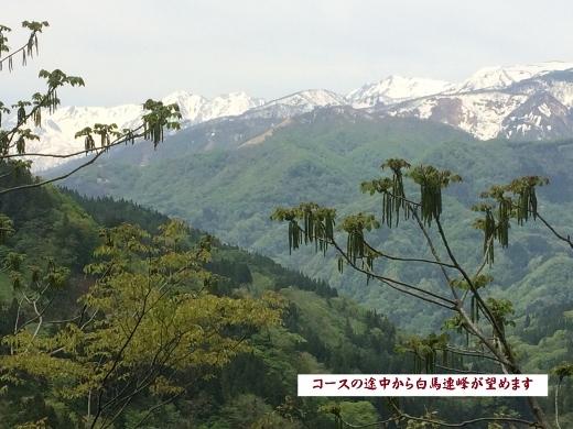 5月6日奉納温泉まで (3) (520x390)