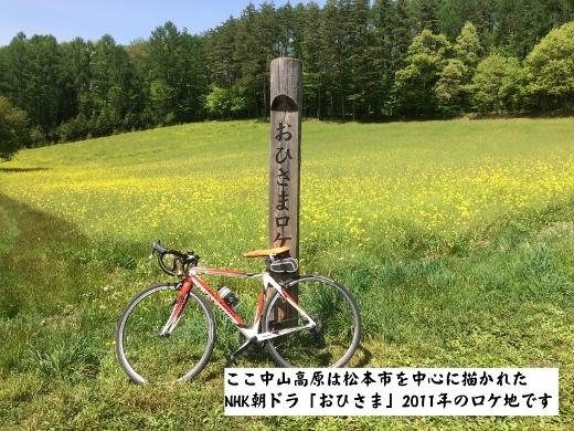 5月14日大町市中山高原 (3) (520x390)