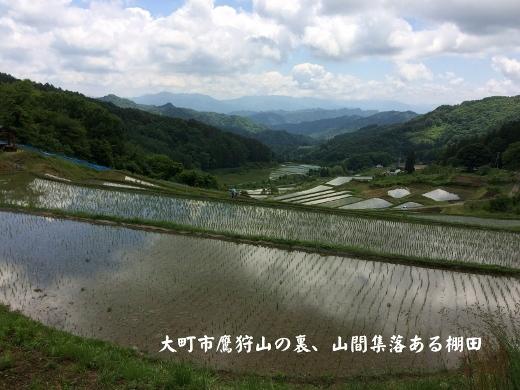 大町の棚田 (520x390)