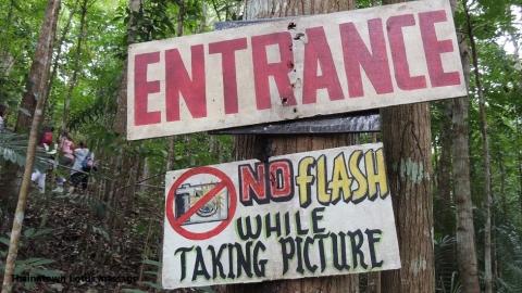 Tarsier Conservation Area, Loboc, Bohol