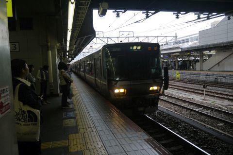 P1070784.jpg