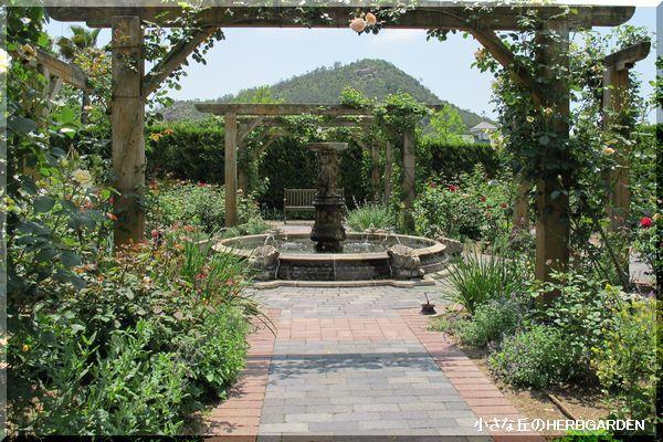 600 バラと宿根草と噴水