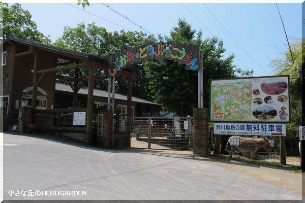 600 渋川動物公園