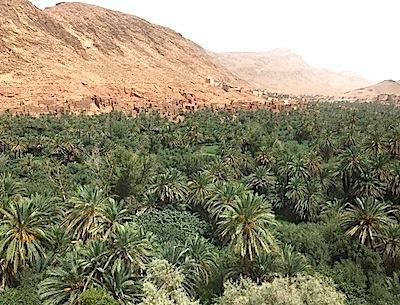 モロッコのオアシス