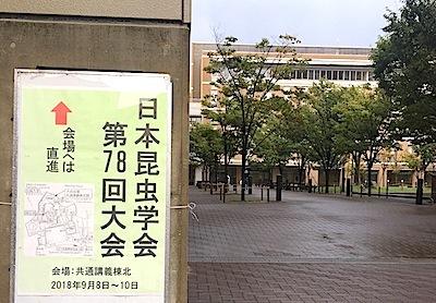 日本昆虫学会第78回大会