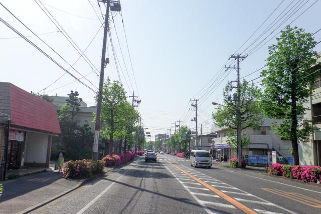 三浦1(2)