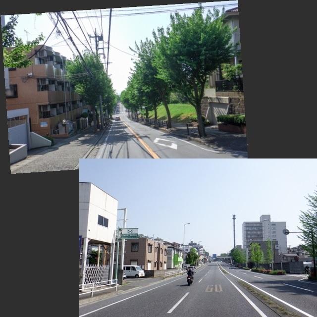 三浦1(3)