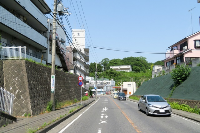 道志(3)