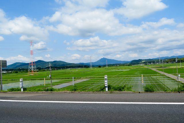 福島1(8)