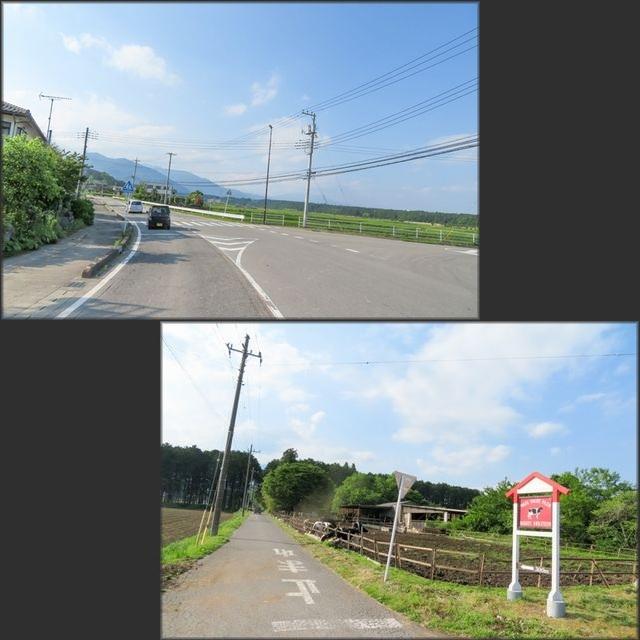 福島1(42)