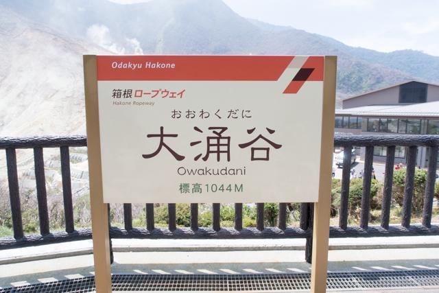 箱根2(17)