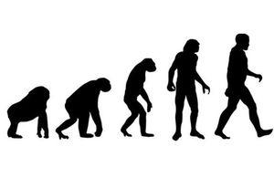猿から人間