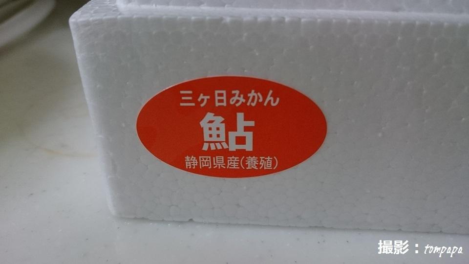 DSC_9019a.jpg